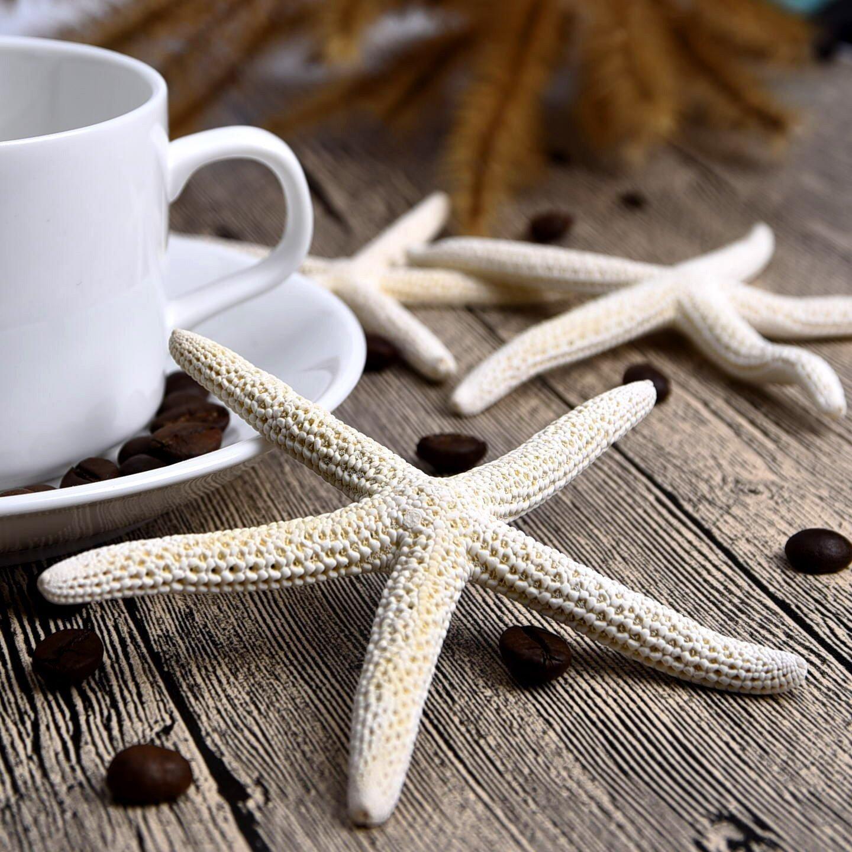 Sun·Light 1 Piece 10-12cm White Natural Finger Sea Star Wedding Decor