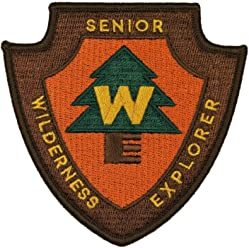 Senior Wilderness Explorer Disney Pixar Patch Scout Badge up Craft Iron On Applique
