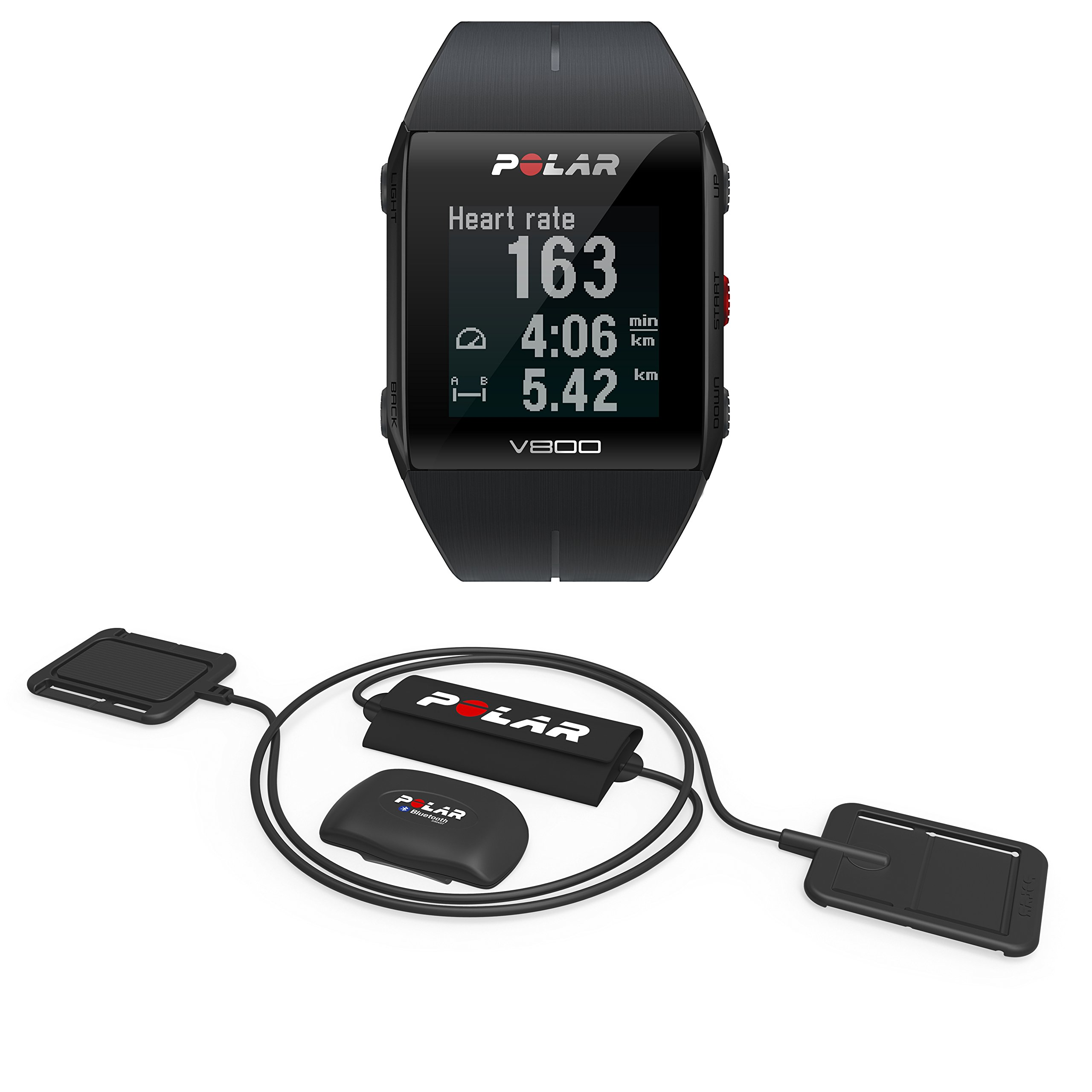 Polar Unisex Equine V800 Heart Rate Sensor for Trainers and Professional Riders, Black, One Size