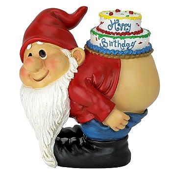 Design Toscano Happy Birthday Statuette Loonie Moonie Gnome ...