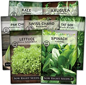 Sow Right Seeds - Large Greens Seed Collection for Planting - Spinach, Arugula, Kale, Lettuce, Tat Soi, Pak Choi and Rainbow Swiss Chard; Non-GMO Heirloom Seeds; Plant and Grow a Home Vegetable Garden