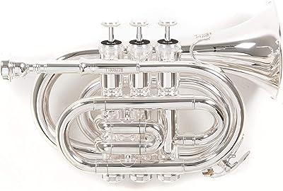 Roy Benson RBPT101G Bb Pocket Trumpet