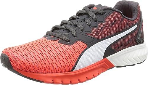 scarpe puma ignite dual