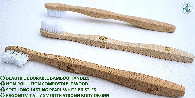 Cepillo de dientes de bambú orgánico ecológico ...