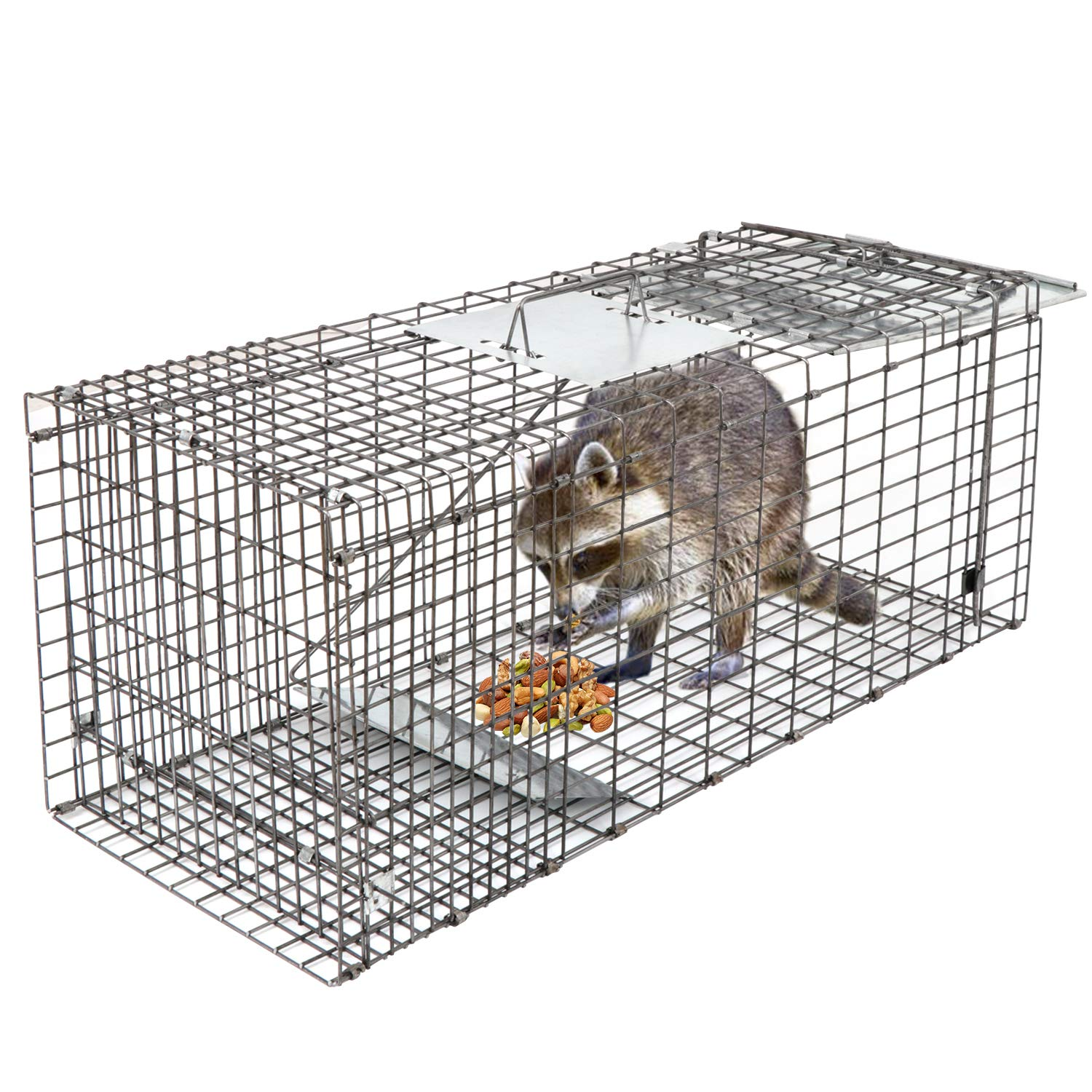HomGarden Live Animal Trap 32''x12.5''x12'' Catch Release Humane Rodent Cage for Rabbits, Groundhog, Stray Cat, Squirrel, Raccoon, Mole, Gopher, Chicken, Opossum, Skunk & Chipmunks Nuisance Rodents