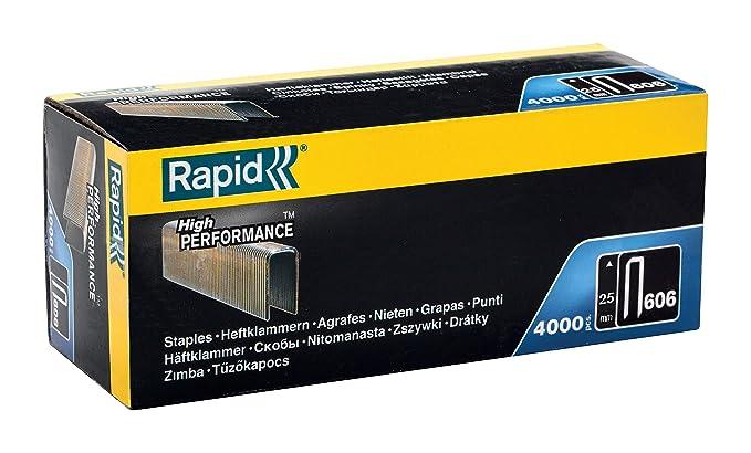 Plateado Rapid Clous n/°8//25mm-galvanis/és-Boite de 5600 Clavos