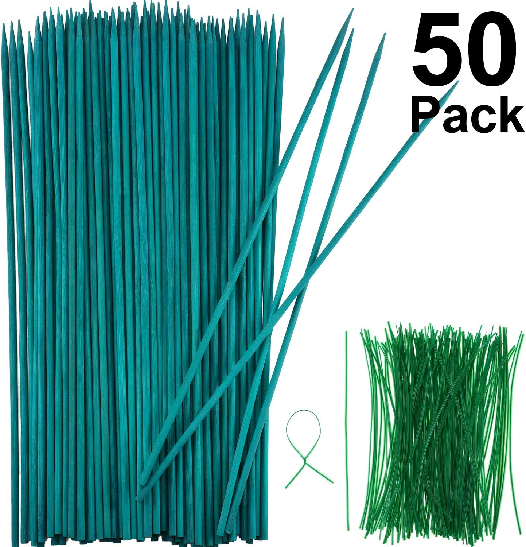 Stake de Plante en Bois Vert Stake en Bois de Bambou Choix Naturels Support de Plantes Florales et 100 Pi/èces 15 cm de Long Cravates /à Torsion M/étalliques Vertes 40 cm, 50 Pi/èces