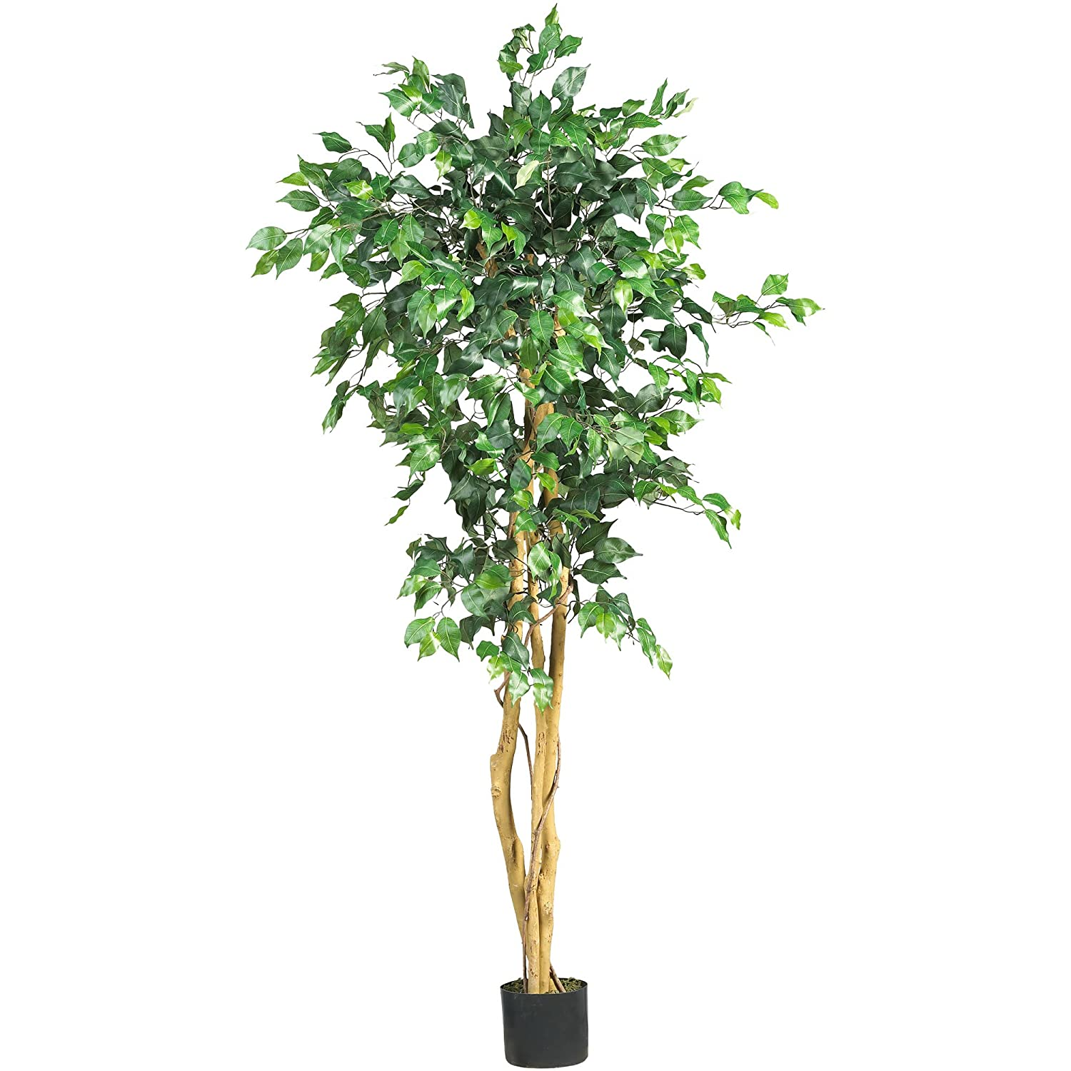 Nearly Natural 5208 Ficus Artificial Tree with Curved Trunk, 5-Feet, Green