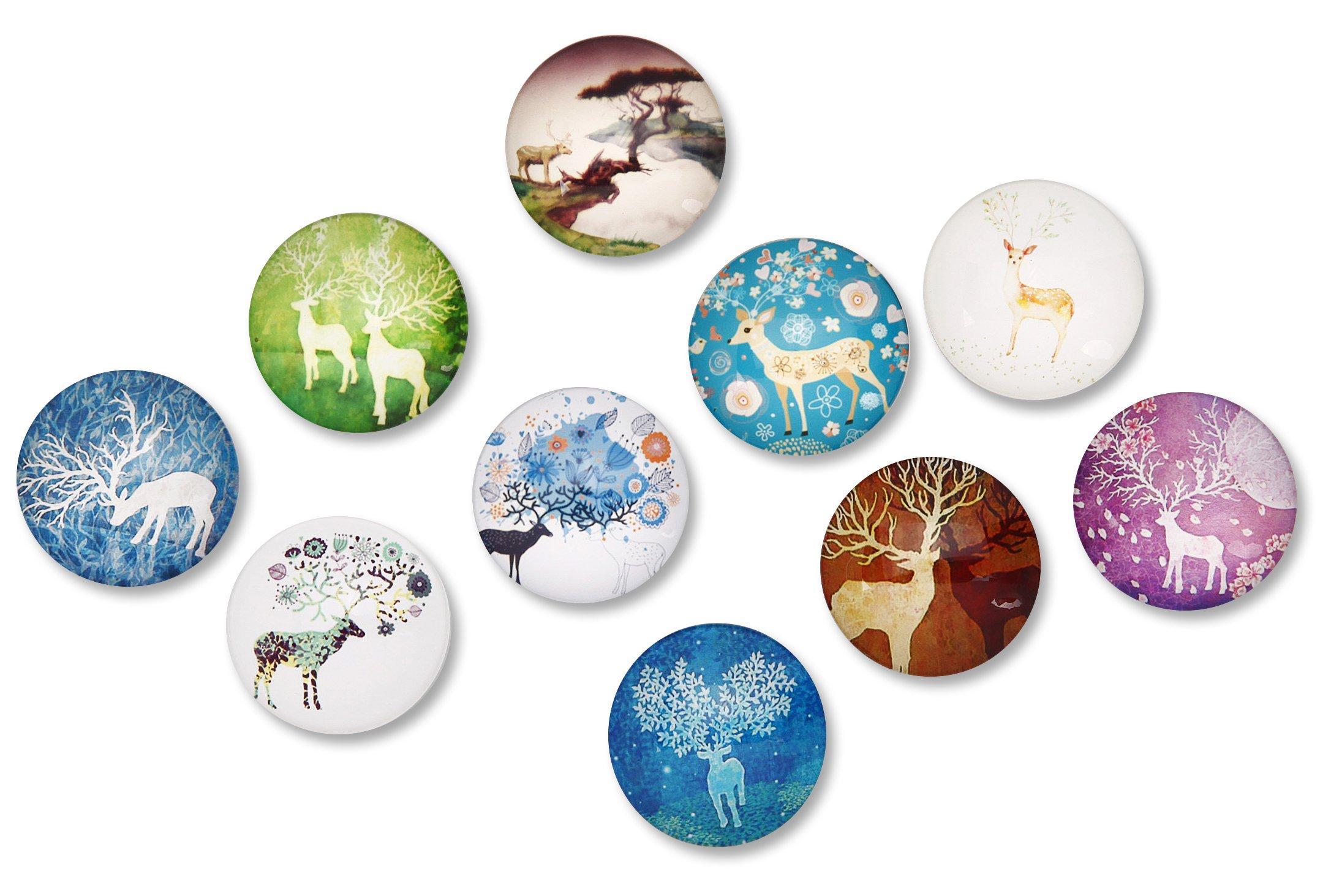 FF Elaine 10 Pcs Fridge Magnets Crystal Glass Housewarming Home Decorations Gift (Elk)