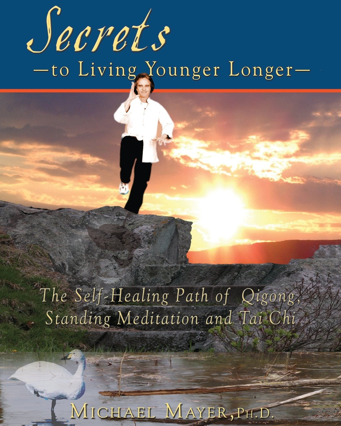 Download Secrets to Living Younger Longer: The Self-Healing Path of Qigong, Standing Meditation and Tai Chi PDF