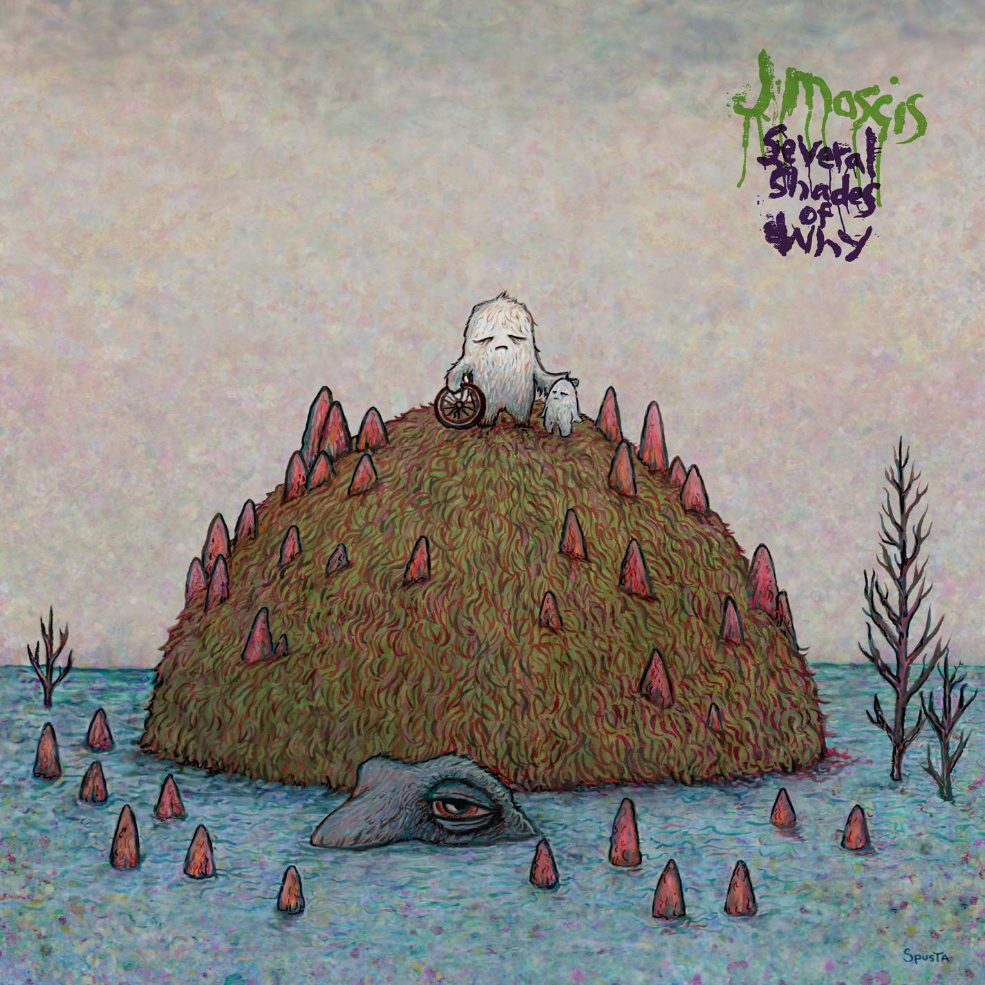 Cassette : J Mascis - Several Shades Of Why (Cassette)