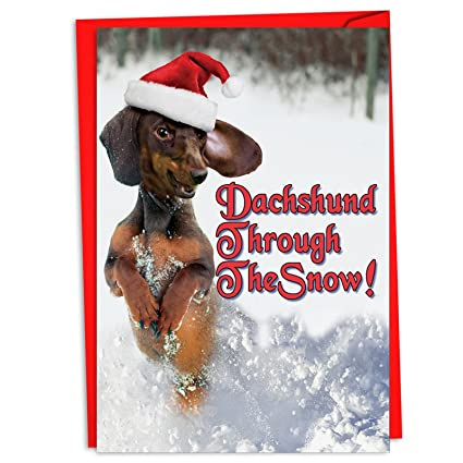 Amazon c4287xsg b12 box set of 12 dachshund through the snow c4287xsg b12 box set of 12 dachshund through the snow merry christmas greeting cards m4hsunfo