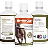 Premium Liquid Glucosamine Hip and Joint Supplement for Dogs - Fast Natural Arthritis Pain Relief and Better Mobility - Extra Strength with Chondroitin MSM and Hyaluronic Acid. Made in USA 32oz. Results in 30 Days or Your