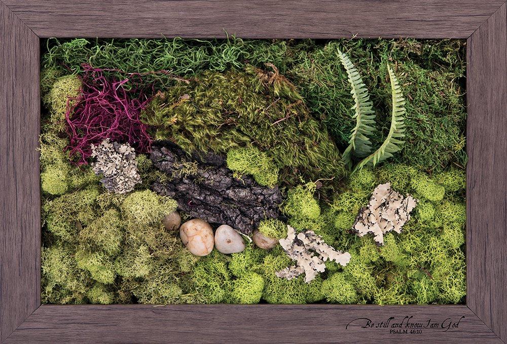 Carpentree 14''x20'' Be Still-Biophilic Framed Art