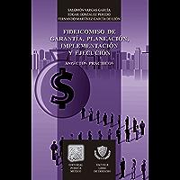 Fideicomiso de garantía, planeación, implementación y ejecución: Aspectos prácticos (Biblioteca Jurídica Porrúa)