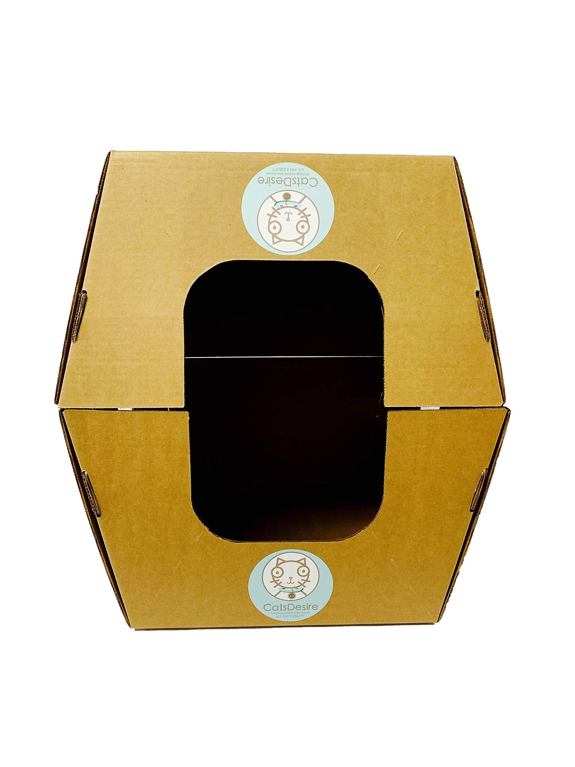 Cats Desire Disposable Litter Boxes Disposable Litter Boxes, 10 Piece 2