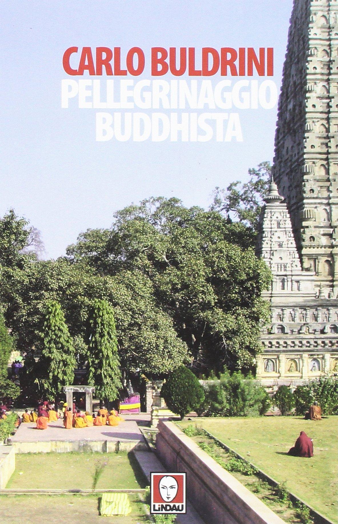 Pellegrinaggio buddhista. Sulle orme di Siddhartha Copertina flessibile – 11 feb 2016 Carlo Buldrini Lindau 8867084496 Buddismo