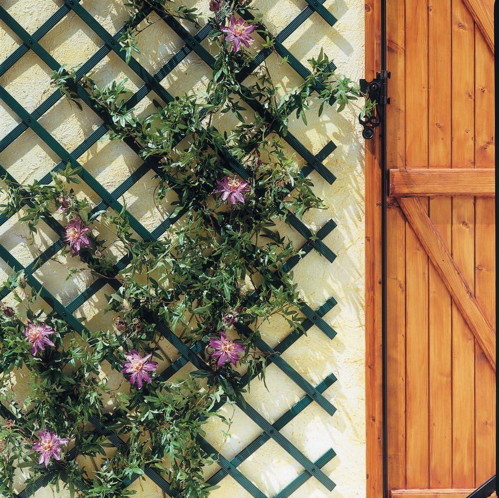 intermas – Celosía Extensible 0, 5 x 1, 5 m PVC Verde treilliflex: Amazon.es: Jardín