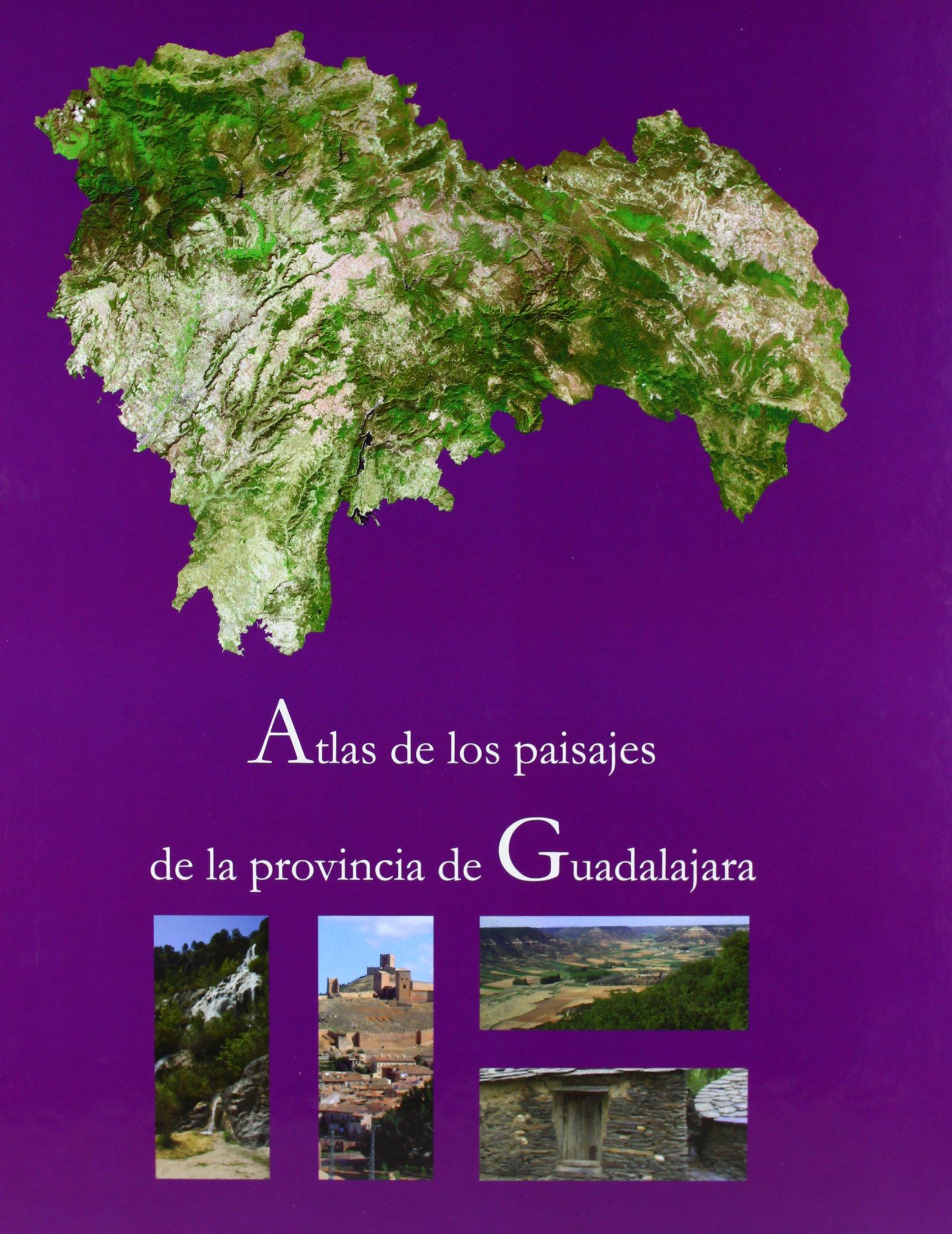 Atlas de los paisajes de la provincia de Guadalajara: Amazon.es: Sancho Comíns, José: Libros