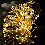 String Lights, Syhonic 2 Pack 10M 100 LED Silver Wire Waterproof Fairy String Lights Firefly Lights DIY Decoration for Bedroom Jars Christmas Wedding Party Festival Outdoor Camping - Warm White