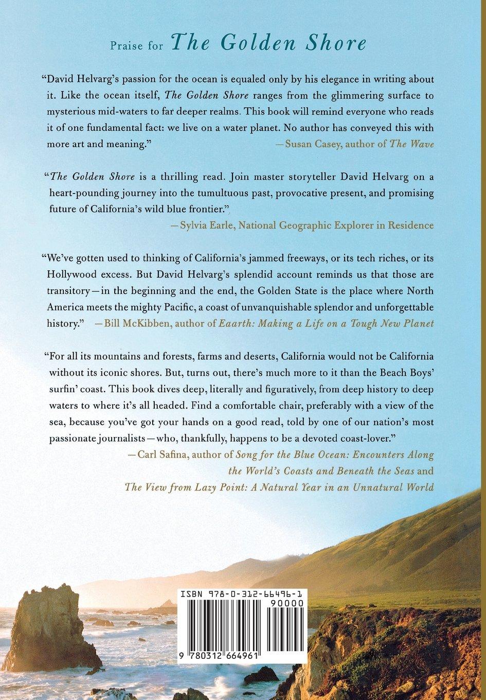 Essay Social Networking Descriptive Essay Bluedragonfly Licensing Executive Cover Letter Free Cover  Letters Templates Essay On Vivekananda also How To Kill A Mockingbird Essay Descriptive Essay Ocean Essay Biology