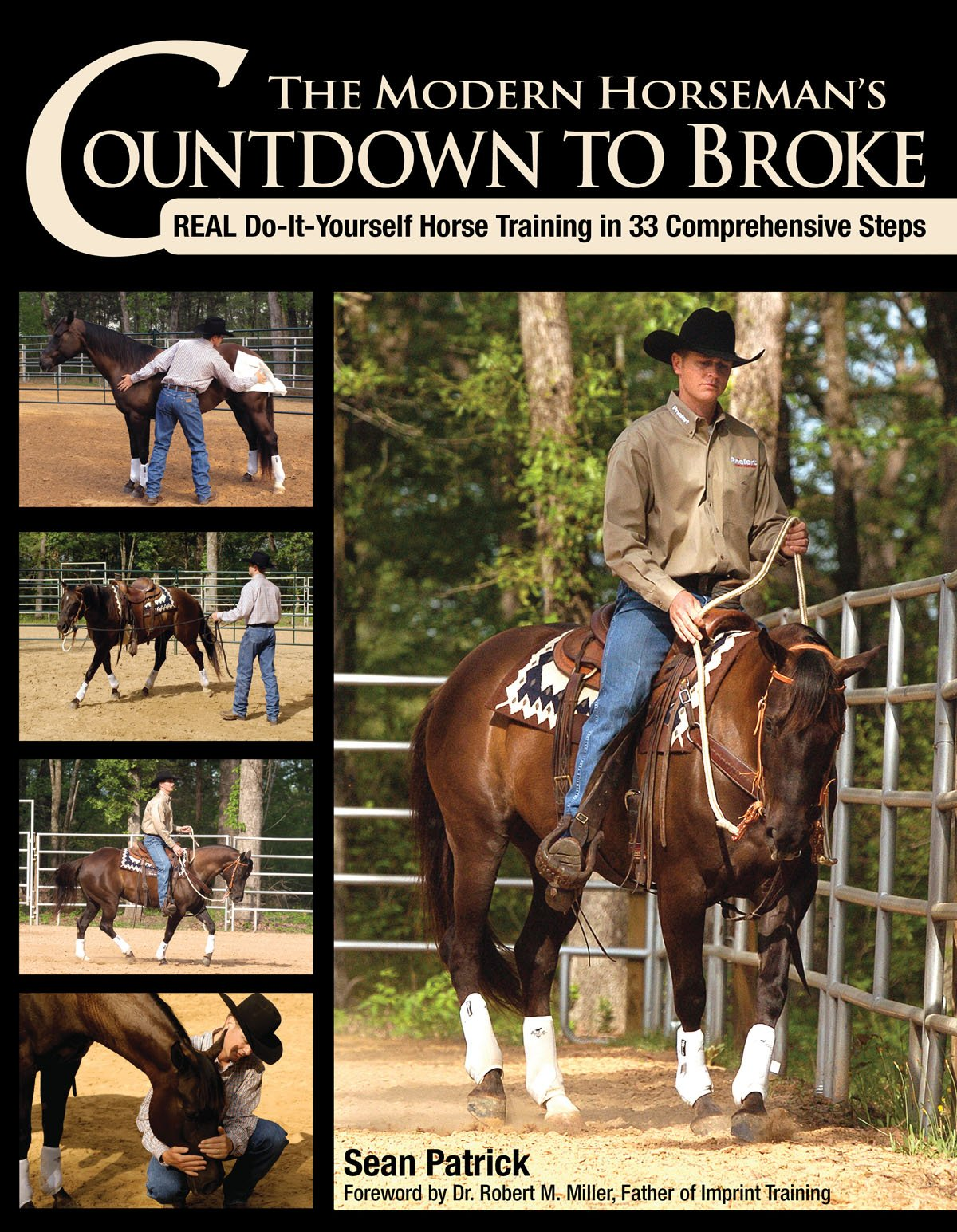 Horse training books amazon the modern horsemans countdown to broke real do it yourself horse training in solutioingenieria Image collections