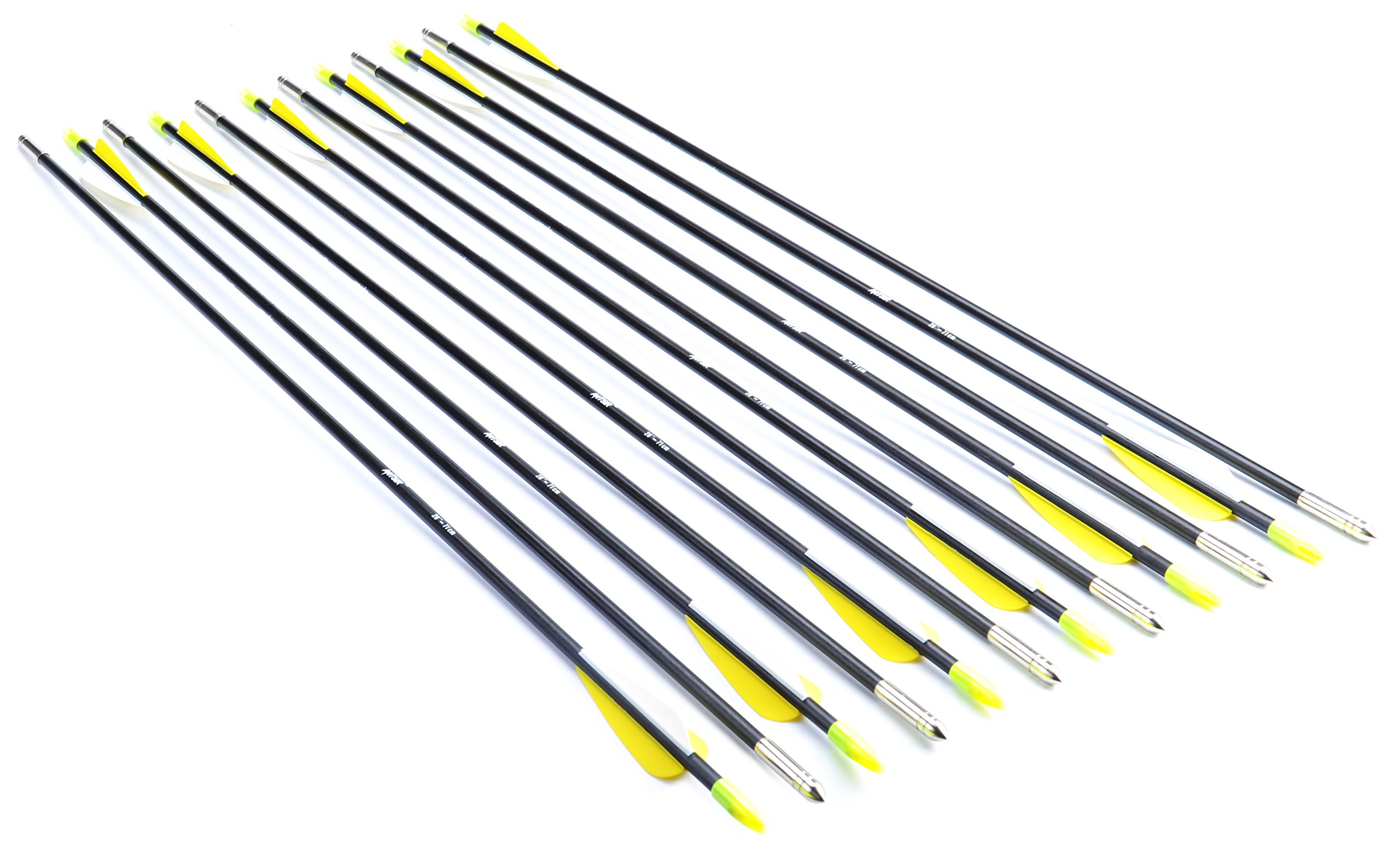 ANTSIR 28-Inch Fiberglass Archery Target Arrows,Practice Arrows for Children,Woman or Beginner,with Adjustable Nocks for Traditional & Recuve Bow(Pack of 12)