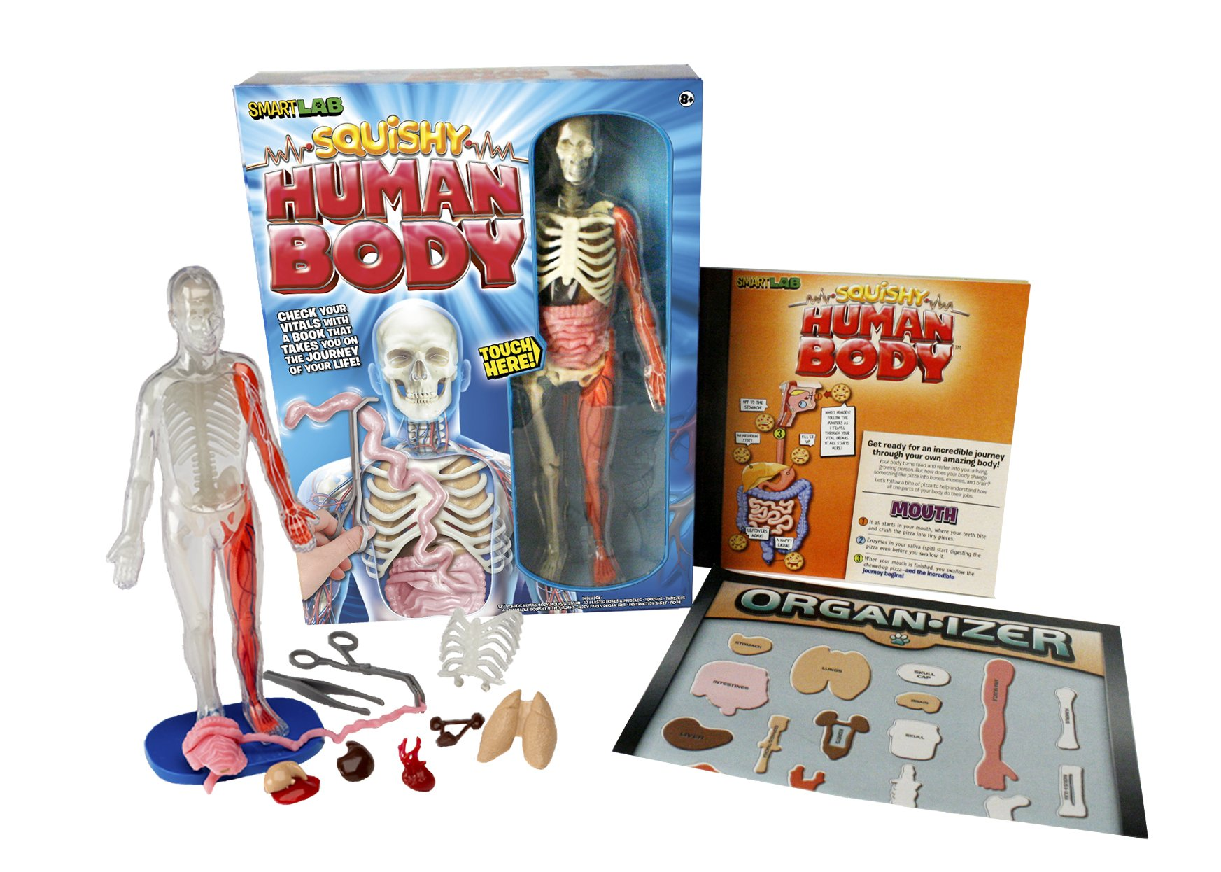 Squishy Human Body Smartlab Amazon Smartlab Toys Books
