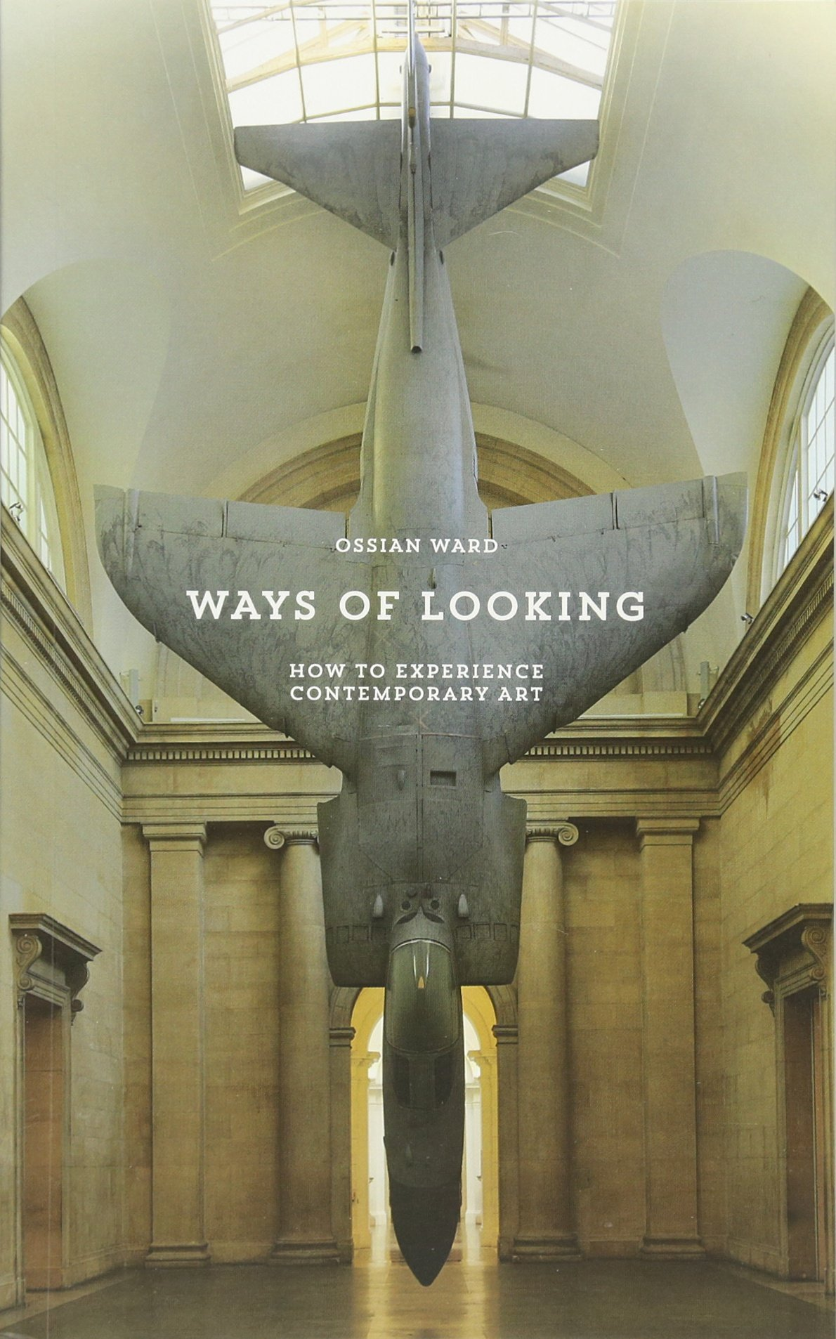Ways of Looking: How to Experience Contemporary Art pdf epub