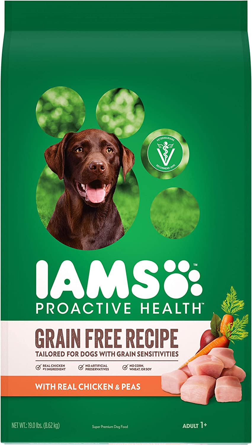 IAMS PROACTIVE HEALTH Dry Best Dog Food to prevent gas