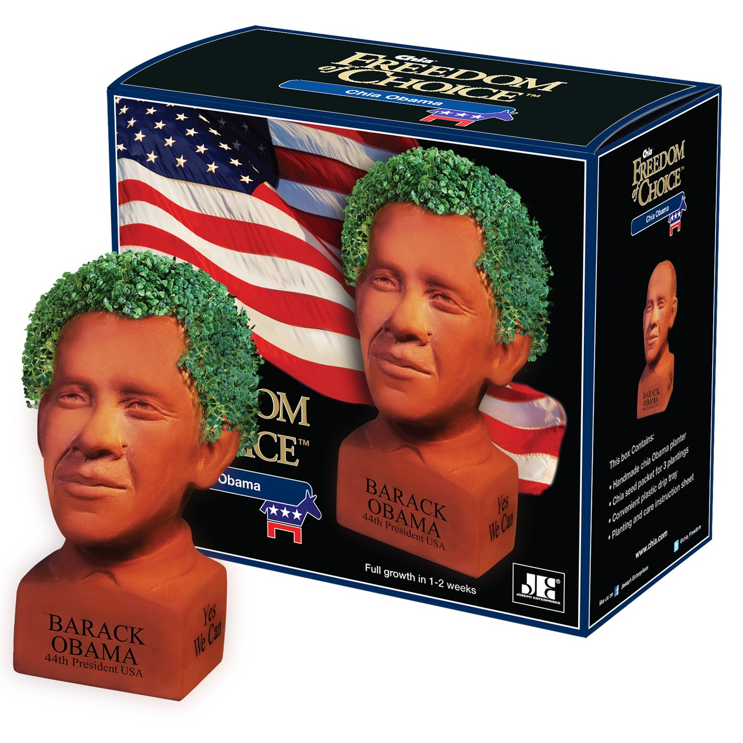 Chia Pet Barack Obama, Decorative Pottery Planter Perfect For Any Occasion
