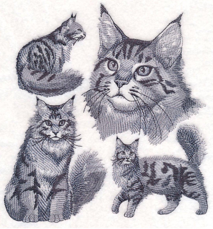 Maine Coon Cat Custom Embroidered Sweatshirt Shirt