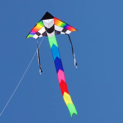Into The Wind Champion Delta Kite: Toys & Games