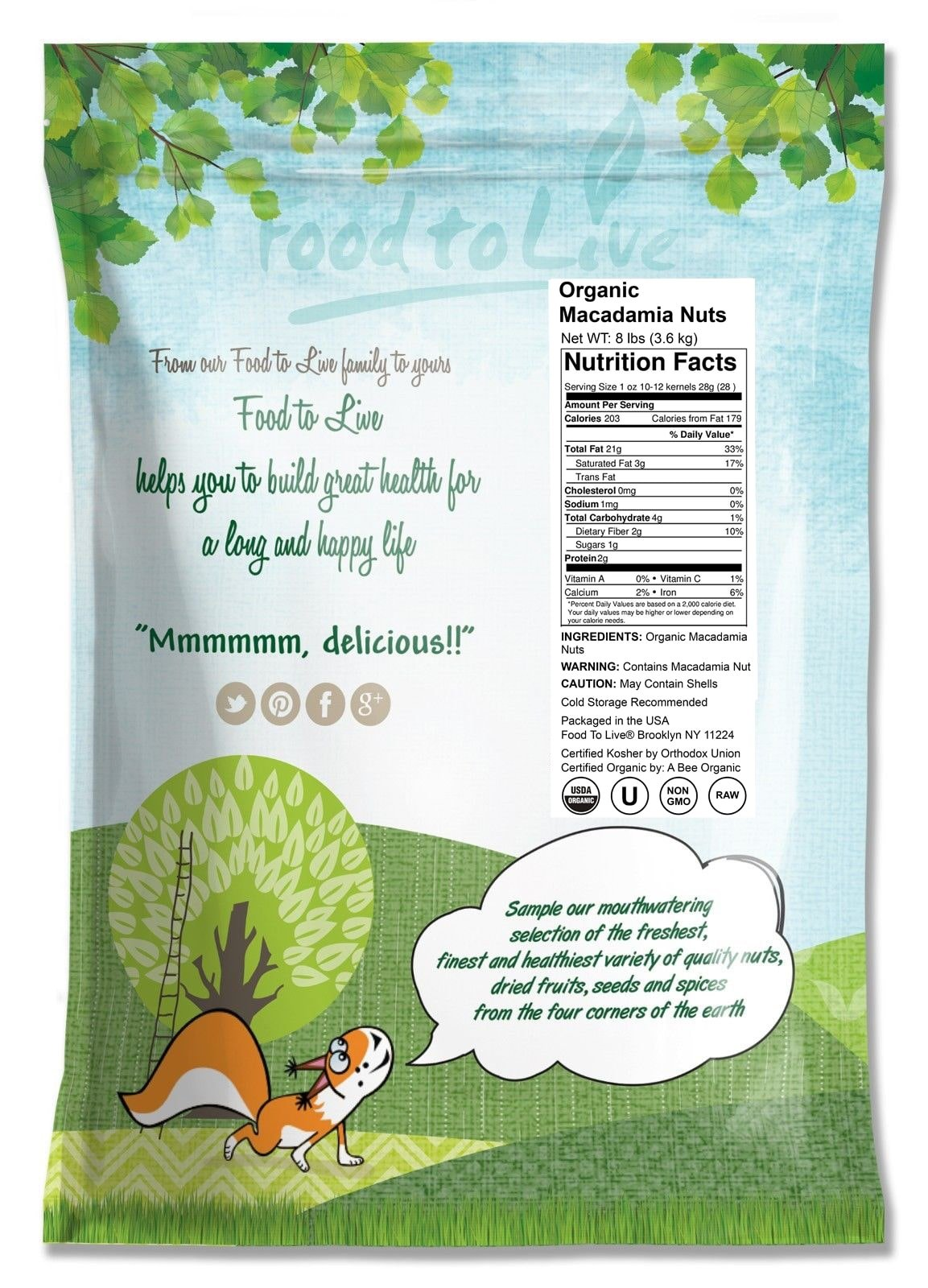 Food to Live Organic Macadamia Nuts (Raw, Kosher) (8 Pounds) by Food to Live (Image #2)