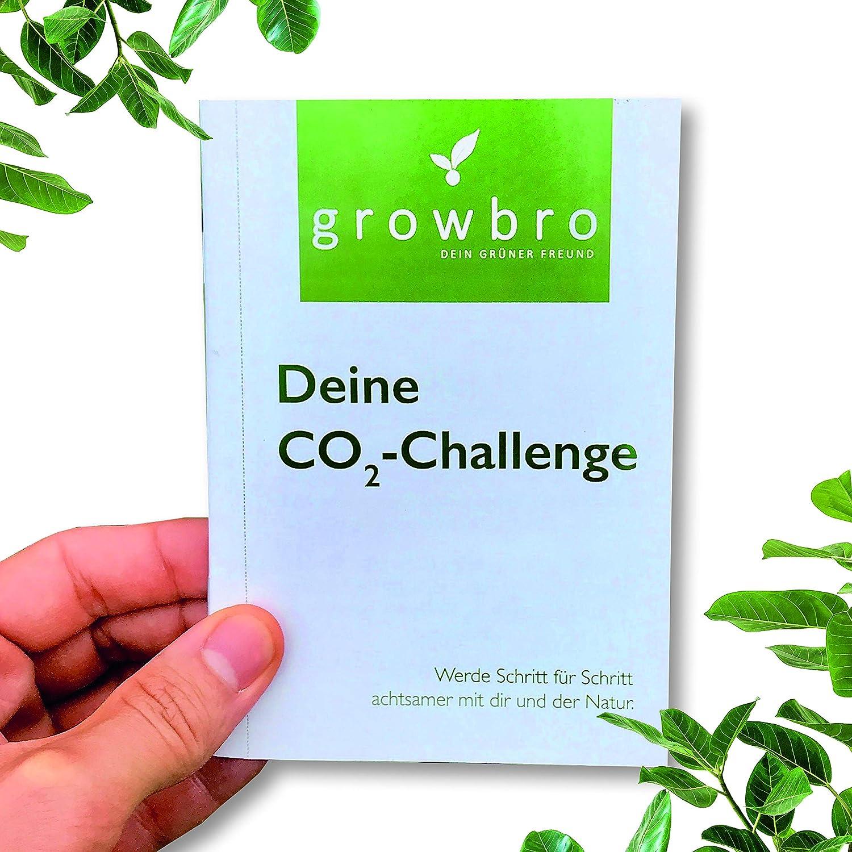 werde zum CO2 Killer nachhaltige und besondere Geschenkidee f/ür Freunde oder Familie growbro Co2 Klima Challenge Gutscheinblock als Geschenk f/ür Frauen und M/änner