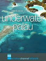 Window Channel's Underwater Palau [OV]