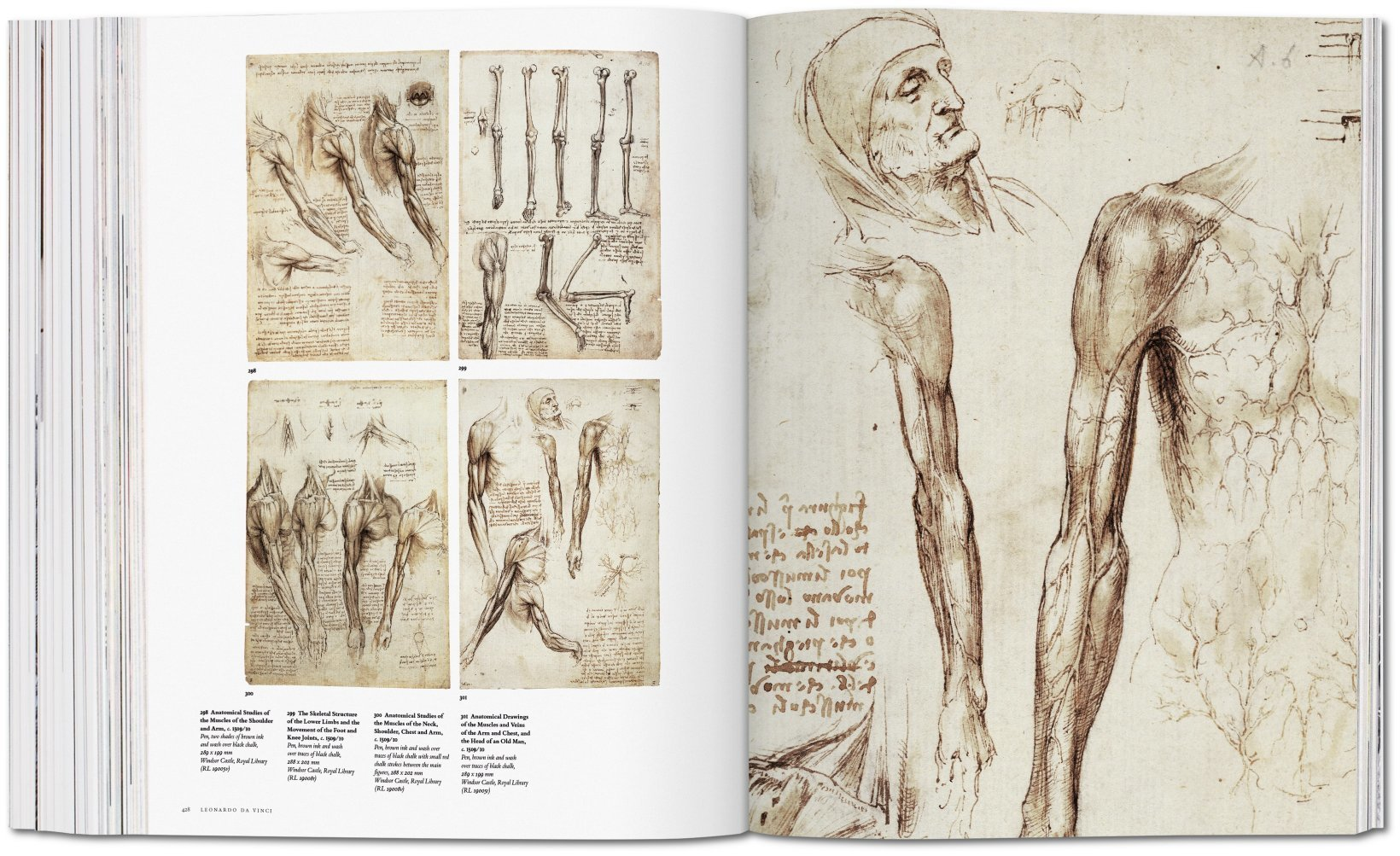 Buy Leonardo Da Vinci The Complete Paintings And Drawings Book