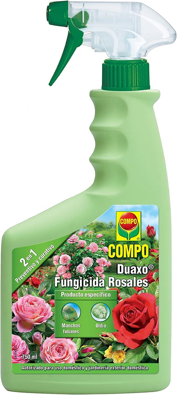 Compo Duaxo Fungicida Rosales, Spray 2 en 1 preventivo y curativo, Apto para jardinería Exterior doméstica, 750 ml, 26x11x5 cm