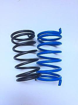 Par Muelles de contraste POLINI negro y azul para embrague Variador Para ciclomotori Piaggio Ciao si Bravo Boxer Boss Grillete Gilera CBA Eco: Amazon.es: ...
