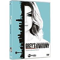 Grey's Anatomy - 13a serie