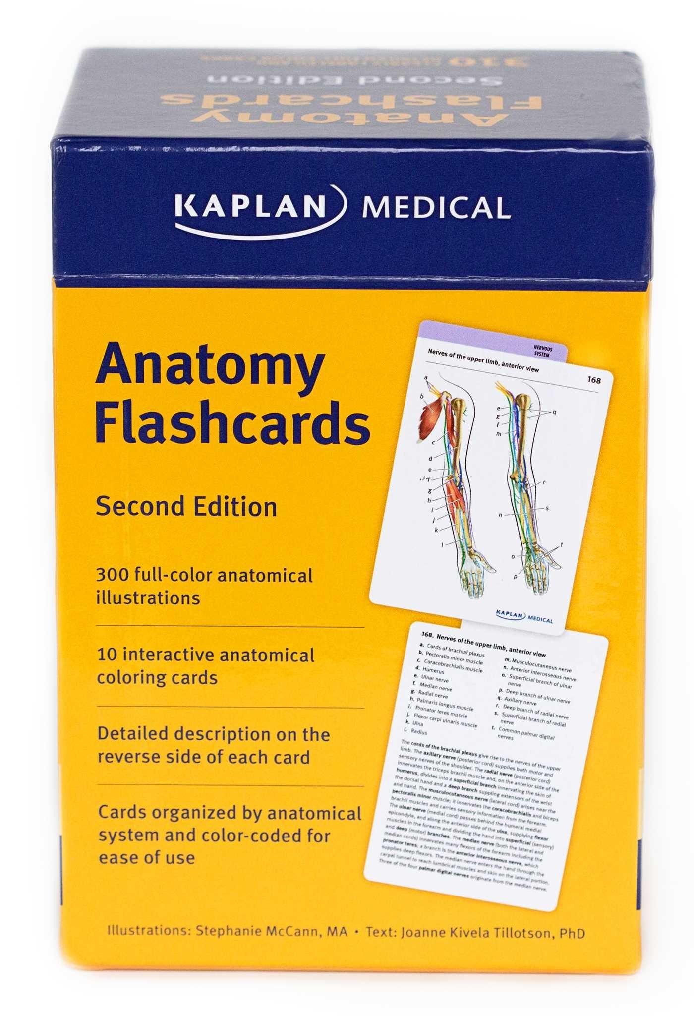 Anatomy Flashcards: Amazon.co.uk: Joanne Tillotson, Sonia Reichert ...