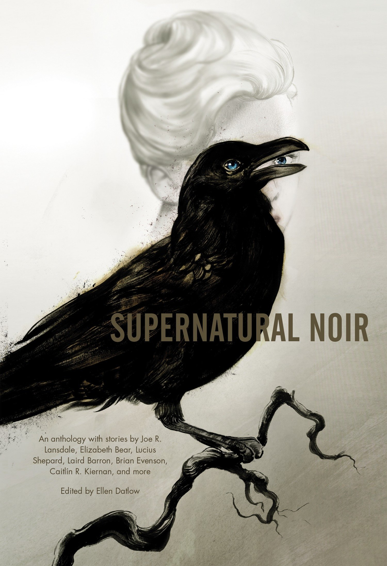 Image result for supernatural noir ellen datlow book cover