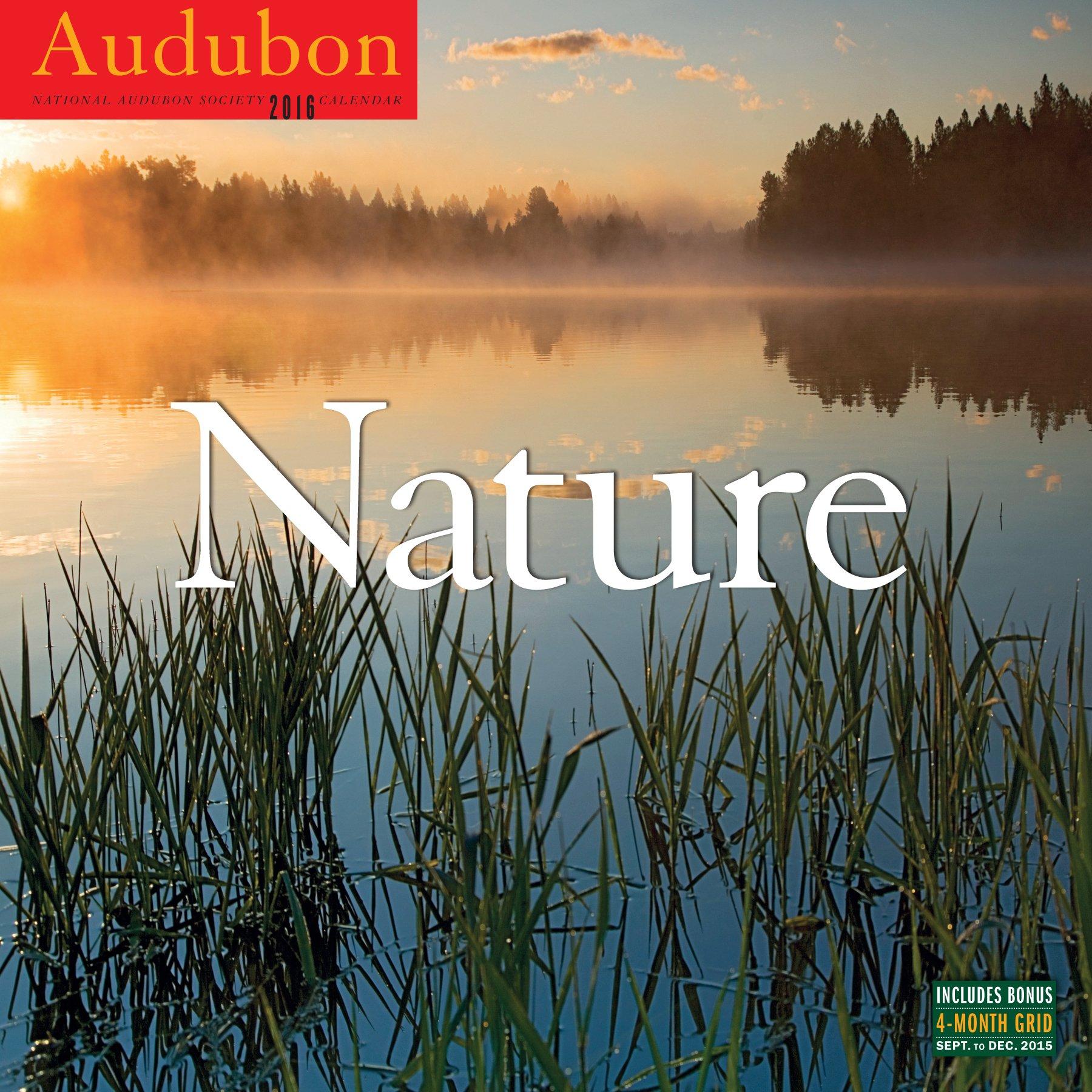 amazon com audubon nature wall calendar 2016 9781579656256