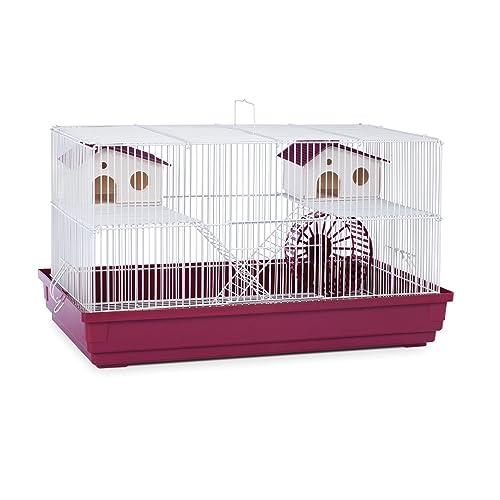 Big Hamster Cage: Amazon.com