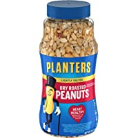 PLANTERS Lightly Salted Dry Roasted Peanuts, 16 oz. Resealable Jar | Peanut Snacks | Great Movie Snack, Active Lifestyle Snack and Party Size Snack | Kosher Peanuts