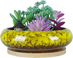 6.1 inch Round Succulent Planter Pots with Drainage Hole Bonsai Pots Garden Decorative Cactus Stand Ceramic Glazed Flower Container Bowl Yellow, with Bamboo Tray
