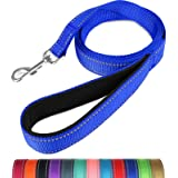 Taglory Nylon Dog Leash 6ft, Soft Padded Handle Pet Reflective Leashes for Medium Large Dogs Walking & Training, Navy Blue