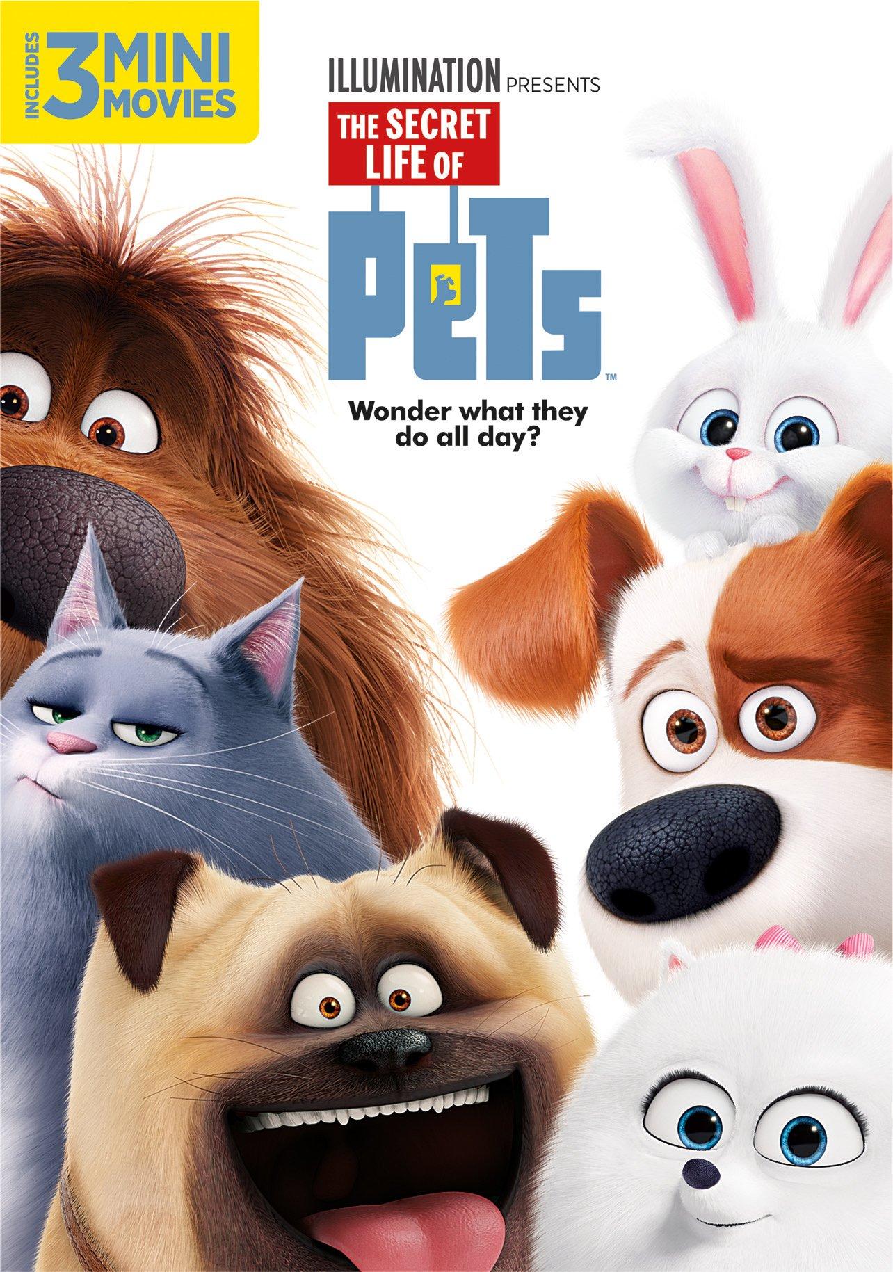 Secret Life Of Pets DVD 0025192317170