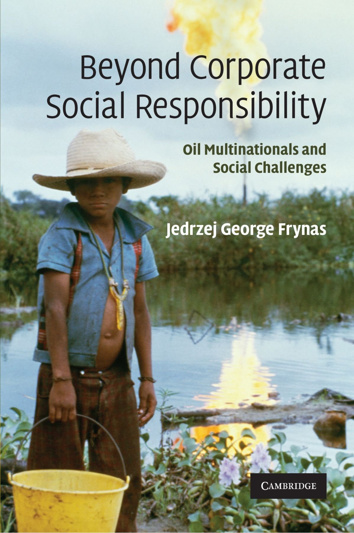 Beyond Corporate Social Responsibility: Oil Multinationals and Social Challenges ebook
