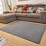 Amazon.com : Fabbrica Home Ultra Soft Area Rug with HD Memory Foam ...